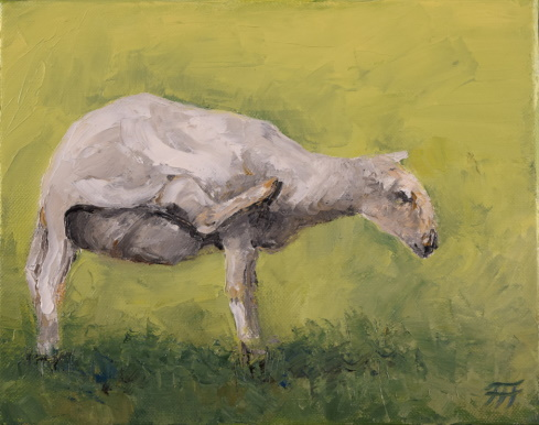 /fig/Sheep - Scratching Sheep - 20x25cm - 8x10in - oil on canvas £1,250.JPG