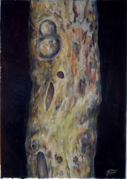 /fig/Trees - Gum Tree Trunk 1 - 36x25.5cm - 14x10in - oil on canvas £2,500.JPG