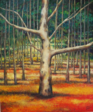 /fig/Trees - Wrekin Trees 1 - 91x76cm - 36x30in - oil on canvas £5,450.jpg